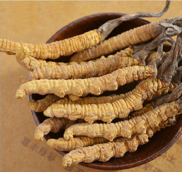 虫草回收-深圳商家报价多少